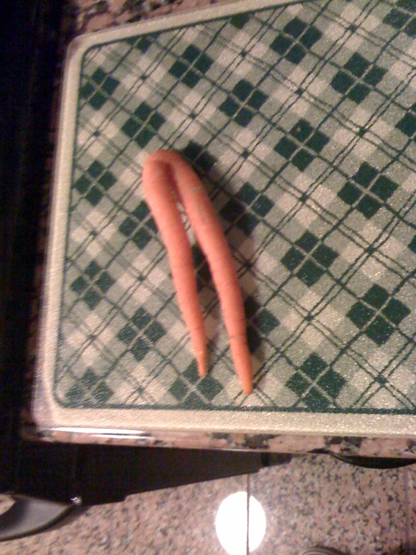 carrot%201
